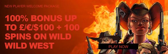 Wild Slots UK Online Casino Bonus